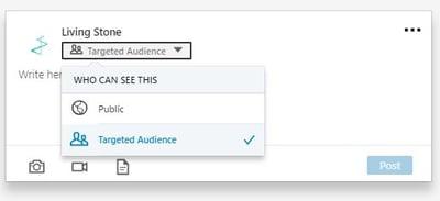 Target audience LinkedIn